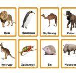 Гадание на пропажу: поиск вещи или животного