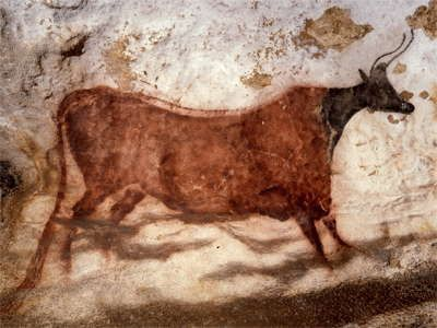 Как снять порчу с коровы: что делать если сглазили скотину