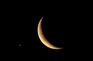 Ритуалы на растущую луну: на деньги, успех и богатство