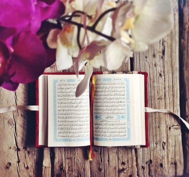Сура Ясин: как правильно читать дуа из Корана
