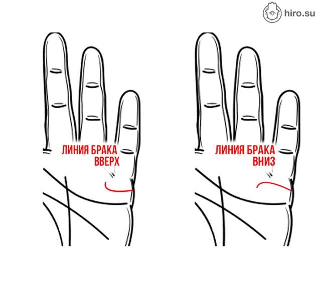 линии брака на руке значение в картинках расскажем, как пользоваться