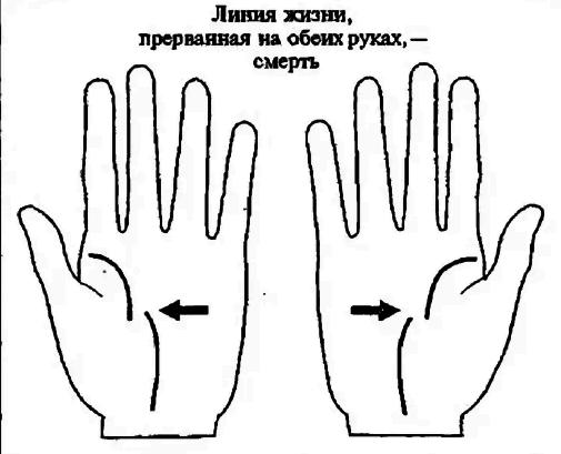 Линия жизни на руке: как определить сколько жить