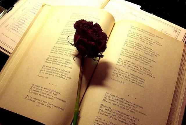 Гадание по книге: предсказание цитатами из нового завета и классики