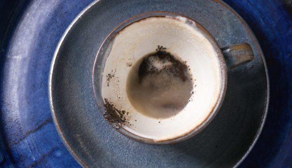 Гадание на кофейной гуще: собака или щенок и толкование символа