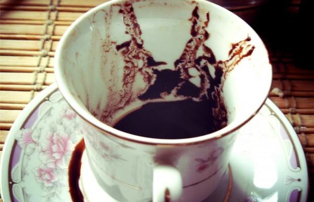 Гадание на кофейной гуще дельфин: особенности толкования