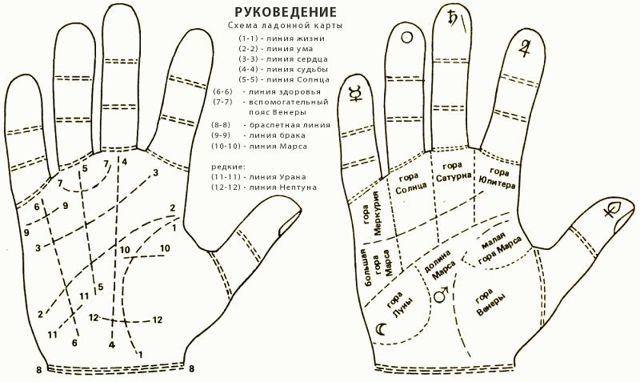 Линия любви на руке: значение линий на ладони в хиромантии