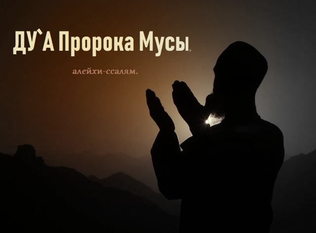 Дуа для бараката: молитва для привлечения успеха в бизнесе