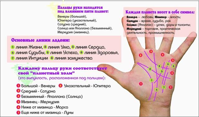 Линия Солнца на руке: значение знака на ладони