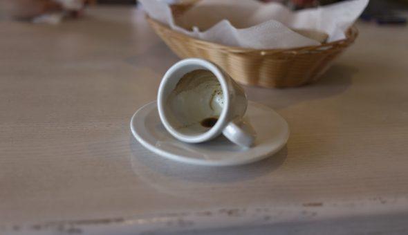 Гадание на кофейной гуще: птица и ее толкование