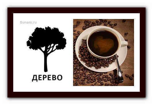 Гадание на кофейной гуще: дерево с кроной и его значение